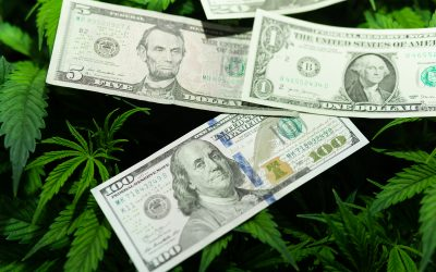 Medical Marijuana Saves Money